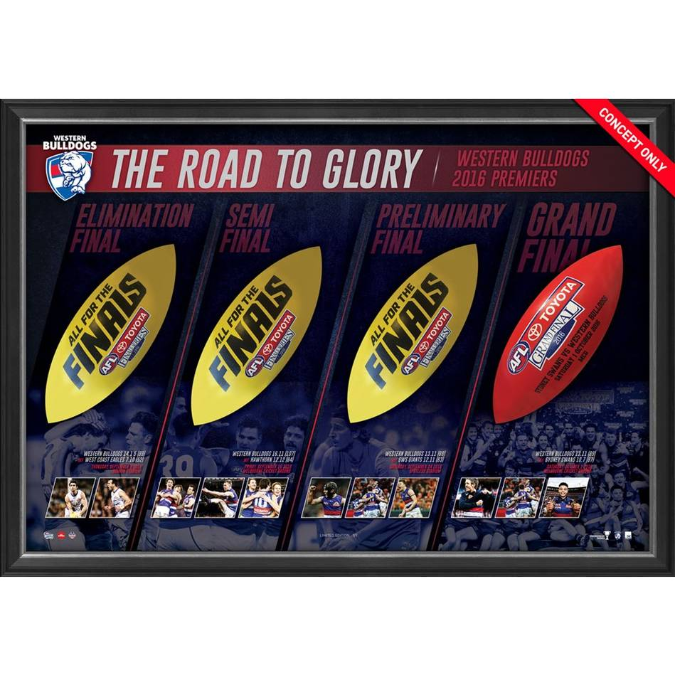 Western Bulldogs 2016 AFL Premiers Match-Used Ball Panel Display0