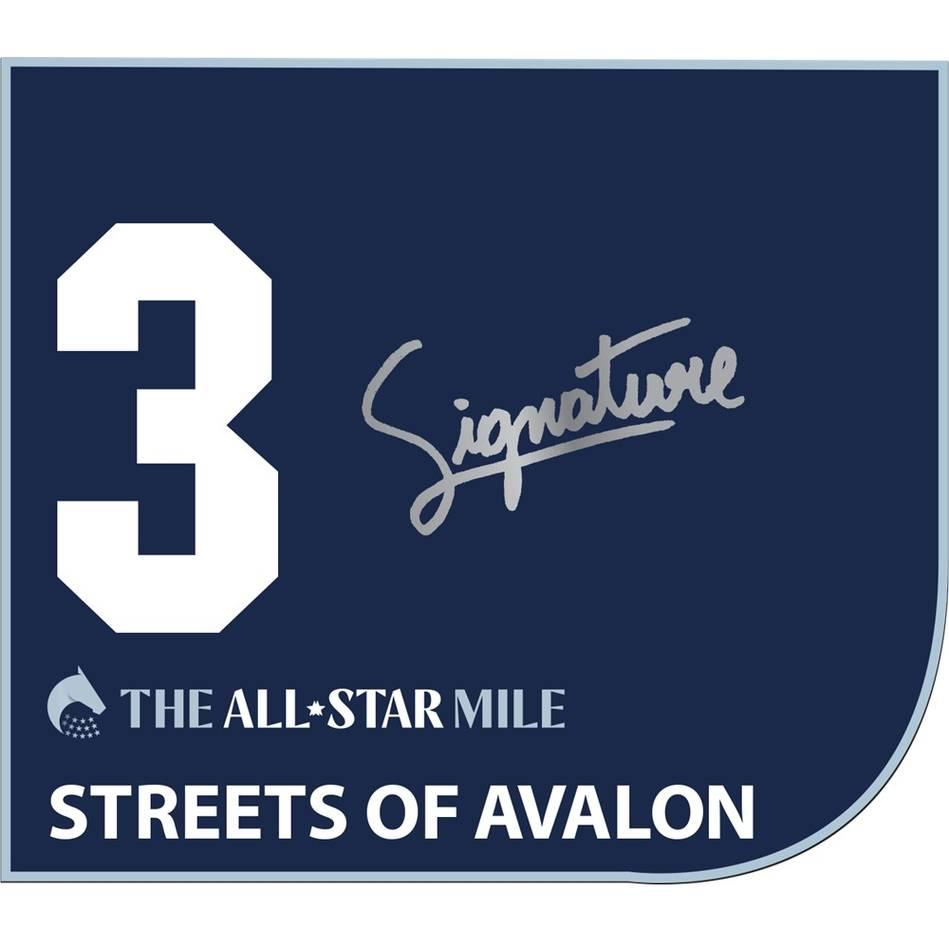 Streets Of Avalon – Zac Spain Signed Saddlecloth0