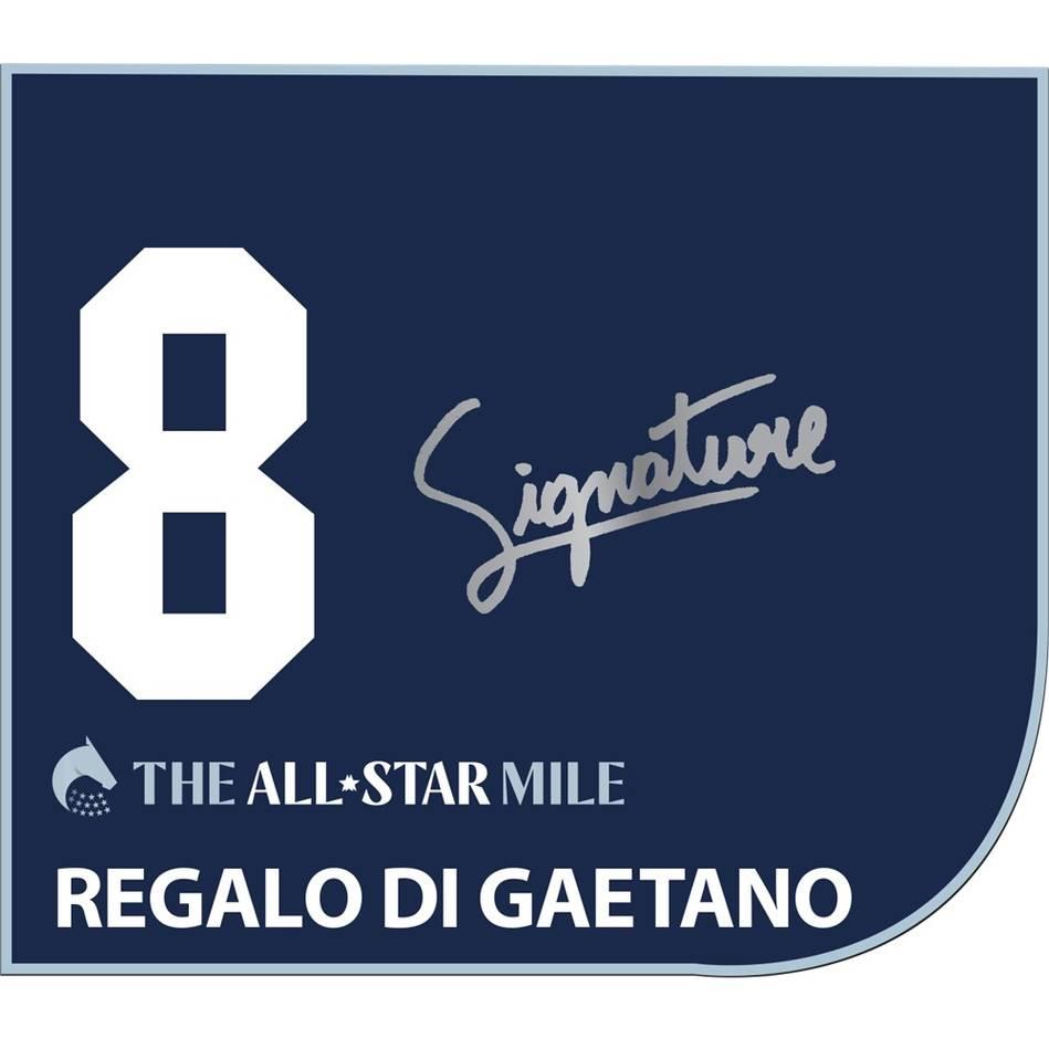 Regalo Di Gaetano – Luke Nolen Signed Saddlecloth0