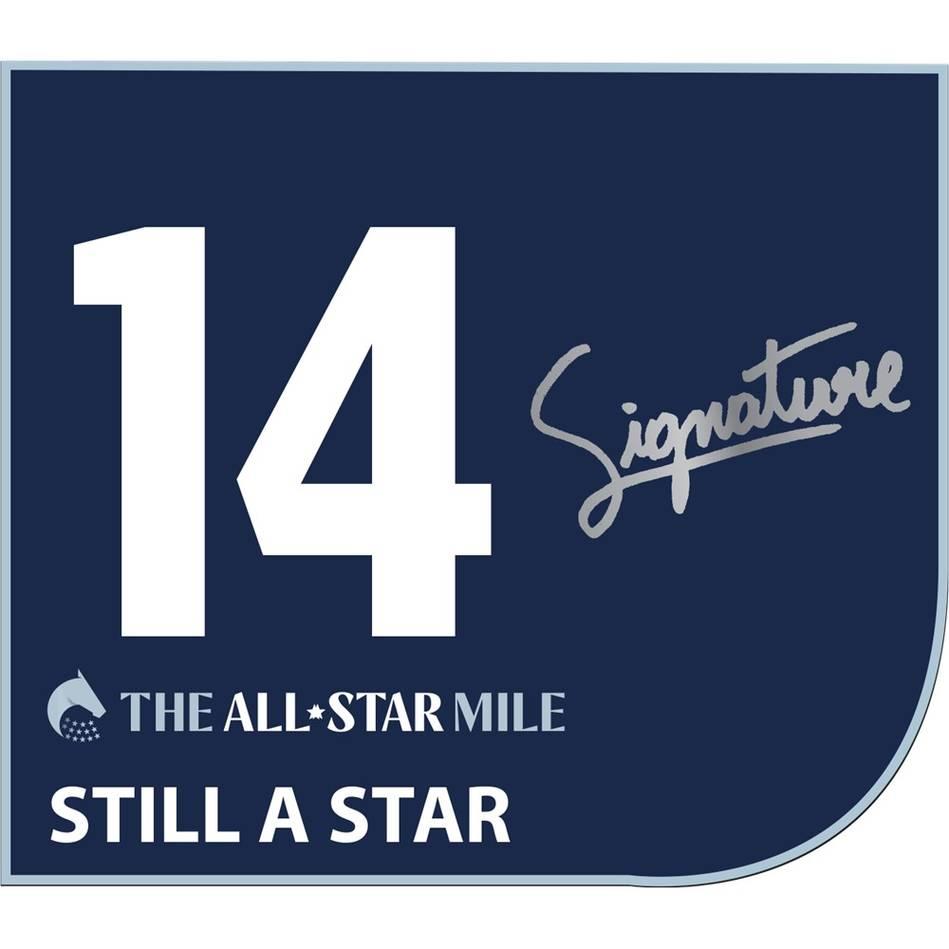 Still A Star - Brendan McCoull Signed Saddlecloth0