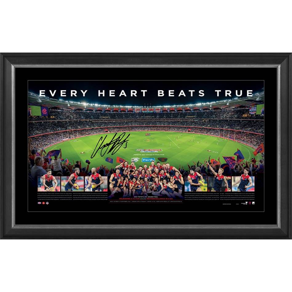 Melbourne 2021 Premiers Signed Panoramic0
